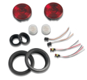 Picture of LED Lights and Resistors